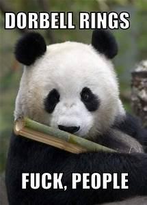 leave me alone panda your meme