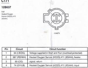 Ford Heated O2 Sensor Wiring Diagram