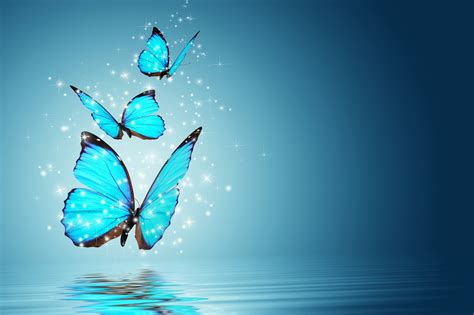 Hd Abstract Picture by Butterfly Hq Wallpaper