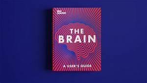 Check Out This  Behance Project   U201cthe Brain  U2013 A User U0026 39 S