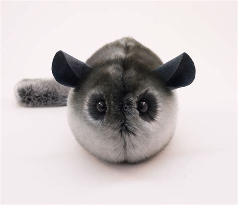 chinchilla toys chinchilla toys bing images