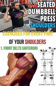 How To Build Bigger Shoulder  U0026 Guide  Ud83d Udc47