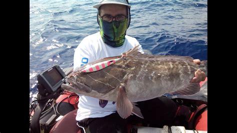 grouper pitch