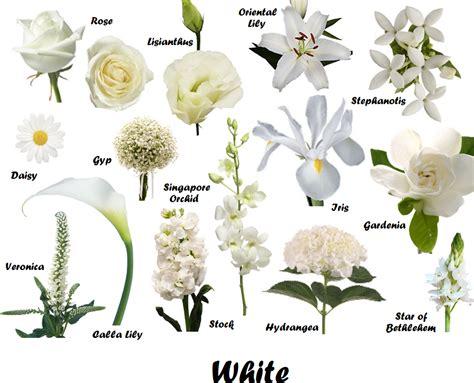 white summer flowers wedding flowers wedding flowers