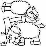 Sheep Coloring Lamb Playing Together Daily Activity Sheet Coloringsheet Coloringsky sketch template