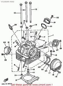 Yamaha Yfm350xp Warrior Atv Wiring Diagram And Color Code