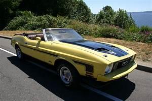 1973 Mustang Convertible 351 CID - Dobson Motorsport