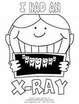 Ray Coloring Pages Dental Bone Teeth Template Xrays Had sketch template