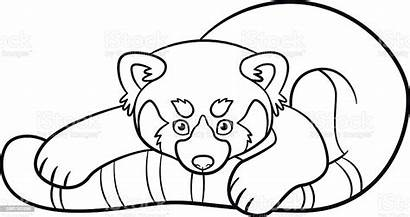 Panda Coloring Pages Vector Activity Illustration Animal