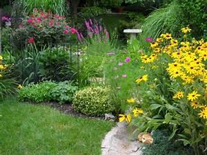 Rain Garden Design HGTV