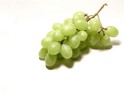 le grappe de raisin un antibiotique naturel dans le raisin