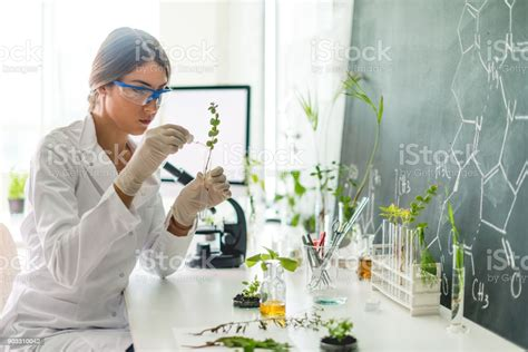 Biologist In Her Laboratory Stock Photo - Download Image ...
