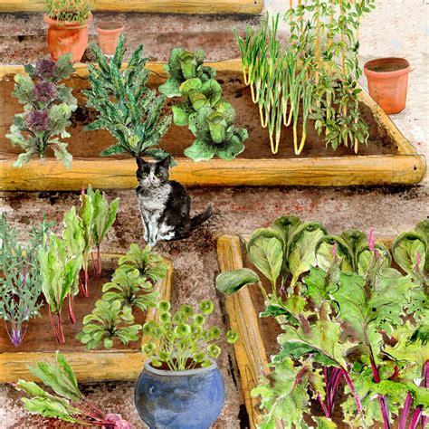 small garden vegetables small vegetable garden autumn winter rocket gardens