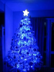 Led Light Design: Cool Blue and White LED Christmas Lights ...