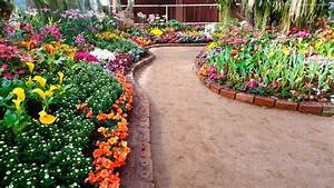 Stock Photos Of Beautiful Flower Garden At Home Images ...
