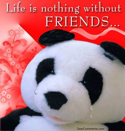 Without Friends Nothing Friend Panda Quotes Friendship