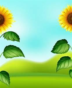 Sunflower, Border, Free, Vector, Art
