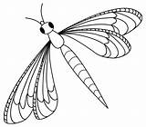 Coloring Insect Pages Flying sketch template