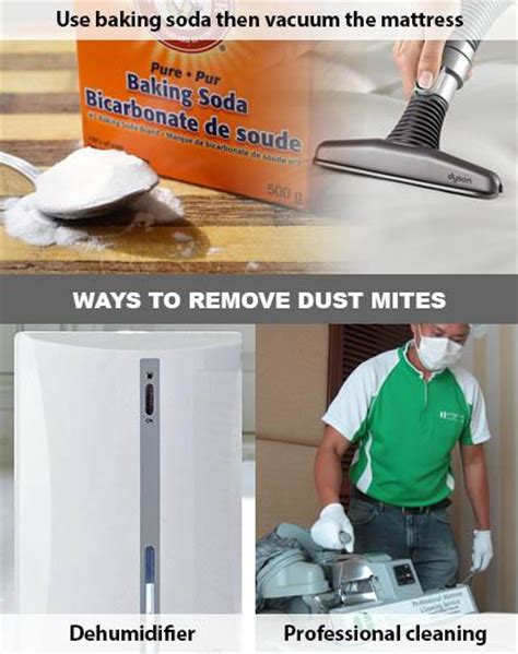 eliminate dust in bedroom how to remove dust mites from a mattress