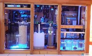 Aquarium Ohne Wasserwechsel : ovp pumpschlauch 17mm 3 4 zoll f r aquarium wasserwechsel wassertausch durchlauf ca 12 ~ Eleganceandgraceweddings.com Haus und Dekorationen
