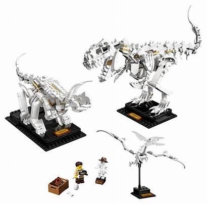 Lego Dinosaur Fossils Official