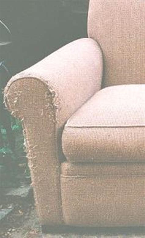Cat Proof Upholstery Fabric by Pet Resistant Cat Or Friendly Furniture Sofas And Chairs