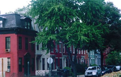 washington dc capitol hill neighborhood photo picture