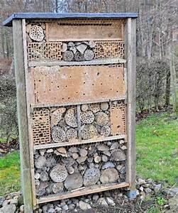 Bienenhaus Selber Bauen : bienenhotel selber bauen tipps zum selberbauen fona ~ Lizthompson.info Haus und Dekorationen
