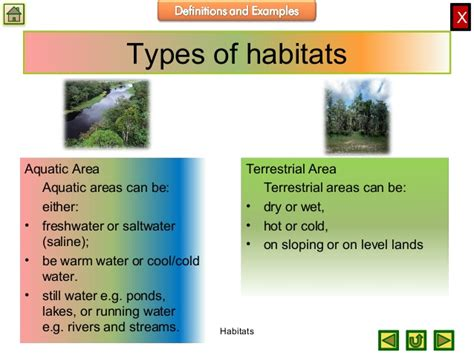 The habitat of an animal or plant is the natural environment in which it normally lives. Biology M1 Ecology Habitats