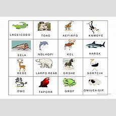 Zoo Vocabulary Worksheet  Free Esl Projectable Worksheets Made By Teachers