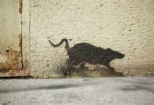 Ratten In Der Wand : umweltbundesamt f r mensch und umwelt ~ Yasmunasinghe.com Haus und Dekorationen