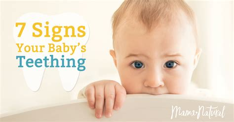 Teething Symptoms 7 Signs Your Baby Is Teething