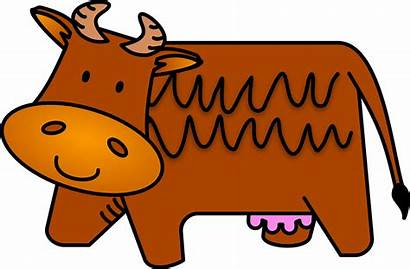 Cow Brown Horns Vector Mammal Animal Pixabay