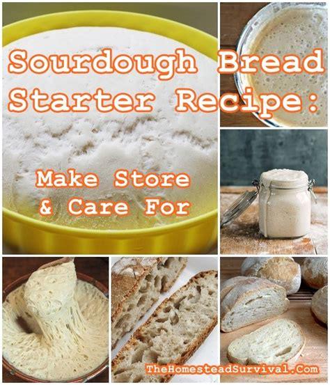 sourdough bread starter recipe  store care  baking  homestead survival