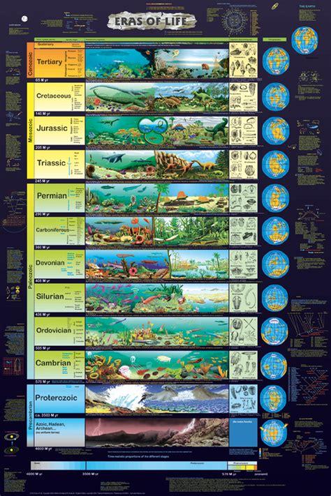 timeline  life evolution  earth motivation