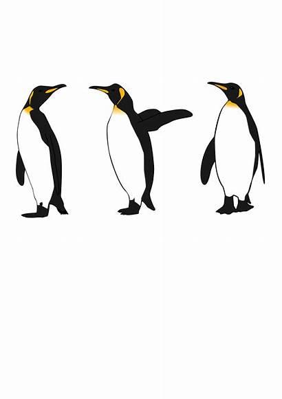 Three Penguins King Clip Onlinelabels