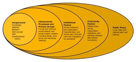 ecological model ecology ecological systems theory