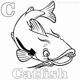 Catfish Coloring Printable Sheets Coloringfolder Channel sketch template