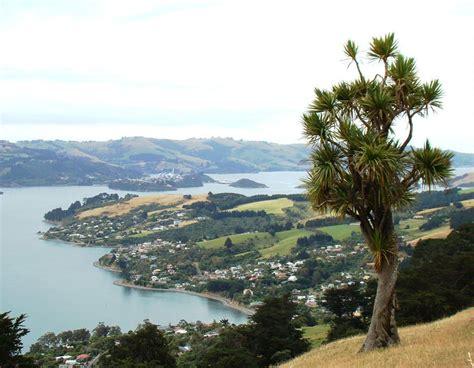 Otago Peninsula Tours Iconic Tours Dunedin New Zealand