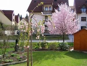 Bäume Für Den Vorgarten : baume fur den vorgarten ~ Michelbontemps.com Haus und Dekorationen