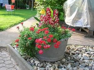 Blumenkübel Bepflanzen Sommer : wer hat eine zinkwanne bepflanzt mein sch ner garten forum ~ Eleganceandgraceweddings.com Haus und Dekorationen