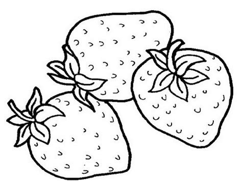 tropical fruits coloring pages ideas fantasy coloring pages