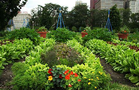 victory gardens chicago potager kitchen garden chicago garden