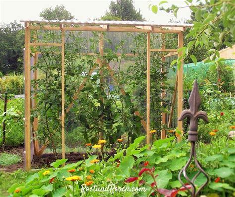 gewächshaus erde wechseln best 25 tomaten gew 228 chshaus ideas on tomaten im gew 228 chshaus tomaten z 252 chten and