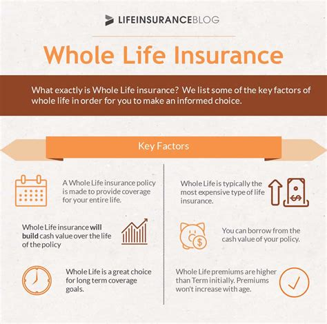 Insurance Quotes by Insurance Types Explained Term Whole
