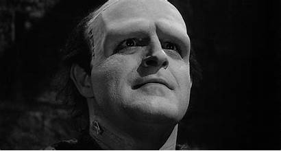 Boyle Peter Frankenstein Young Junior Brooks Mel