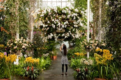 nyc botanical gardens 2015 nyc flower shows where to see and smell the