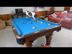 Pool Position : how to play position on your next shot in pool youtube ~ A.2002-acura-tl-radio.info Haus und Dekorationen
