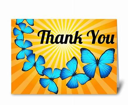 Thank Butterflies Cards Sunlight Greeting Card Gnome