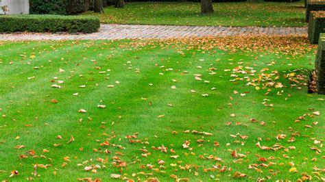 Garten Aufgaben Im Herbst by Rasen Vertikutieren Herbst Gartenarbeit Im Herbst